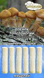 Мицелий «грибные палочки»,  мицелий на брусочках,  мицелий на палочках