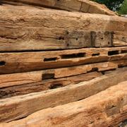 Куплю старе дерево ( бруси дуба та твердих порід )